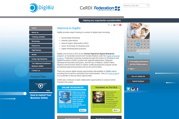 DigiBiz - website