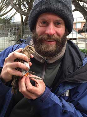 Richard Chamberlain with Latham's Snipe