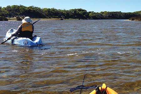 Western Australia Healthy Estuaries Portal