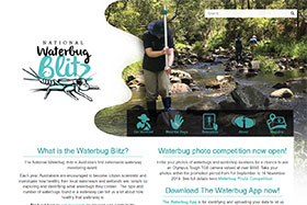 The National Waterbug Blitz project website