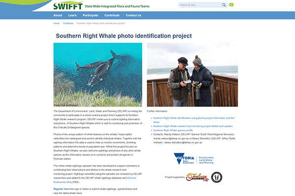 Southern Right Whale photo identification project - website portal