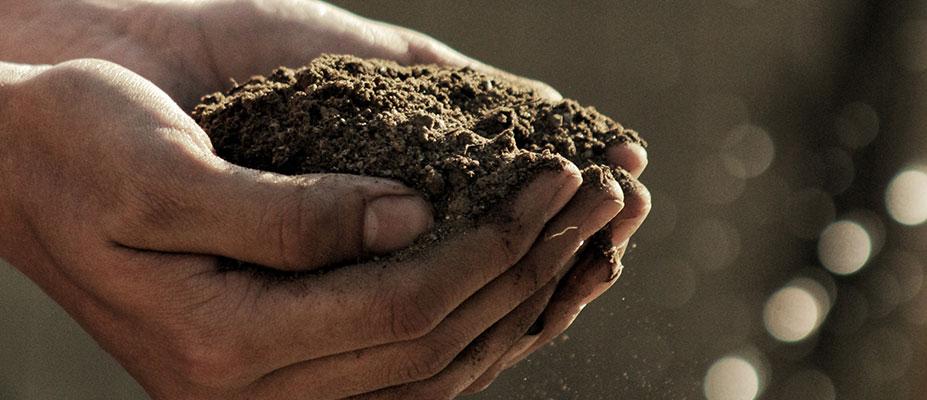 Visualising Australia's Soils
