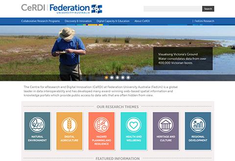CeRDI home page