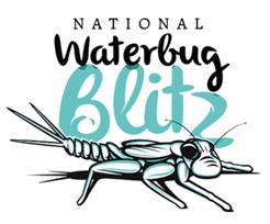National Waterbug Blitz logo