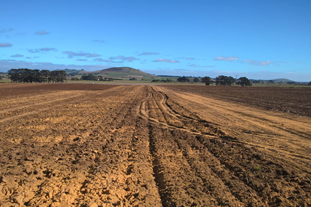 Industry-funded soil science PhD opportunity
